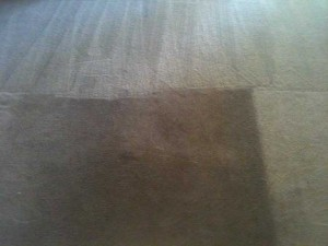 Carpet Cleaning Ruidoso Before and After 1