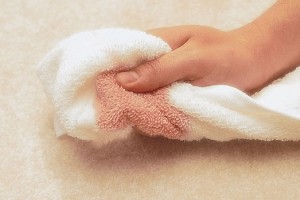 Carpet Stain Removal Ruidoso New Mexico