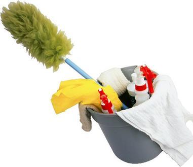 ruidoso cleaning